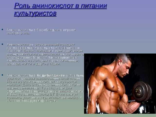 Протеины для похудения: сывороточные или казеиновые