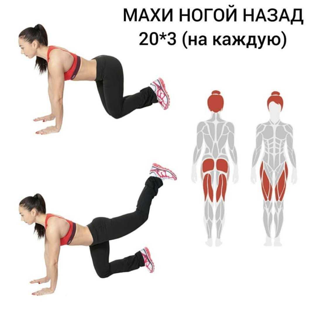 Топ-30 эффективных упражнений на пресс: 3 готовых плана тренировок для живота
