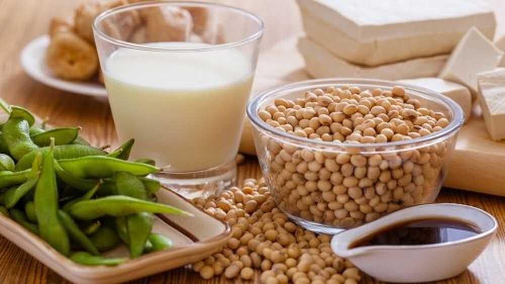 Соевый протеин: плюсы и минусы. изолят соевого белка: польза и вред   рецепты здоровья