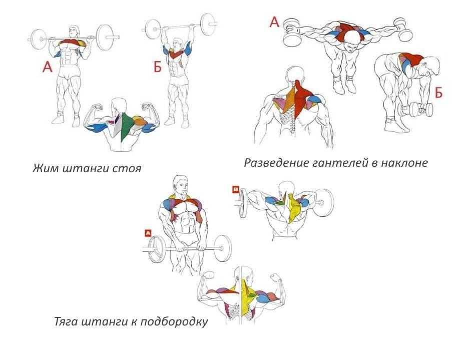 Развитие гибкости детей младшего школьного возраста на занятиях по хореографии