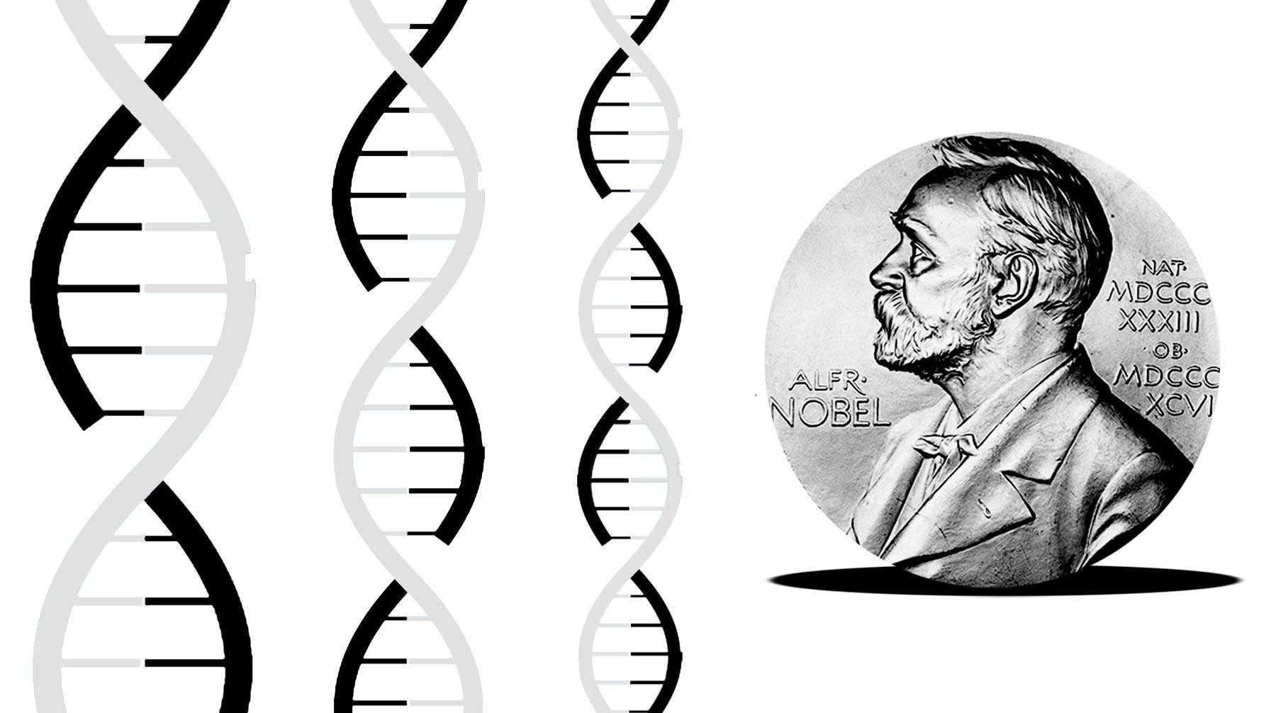 Нобелевскую премию по химии присудили за метод редактирования генома crispr/cas9