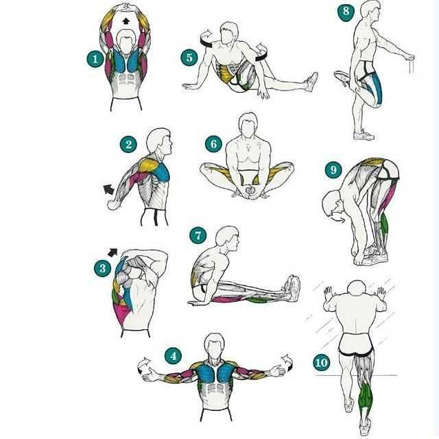 Как ускорить восстановление мышц после тренировки?