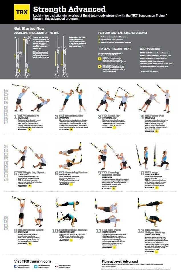 Лучшие упражнения джозефа пилатесадля мышц кора