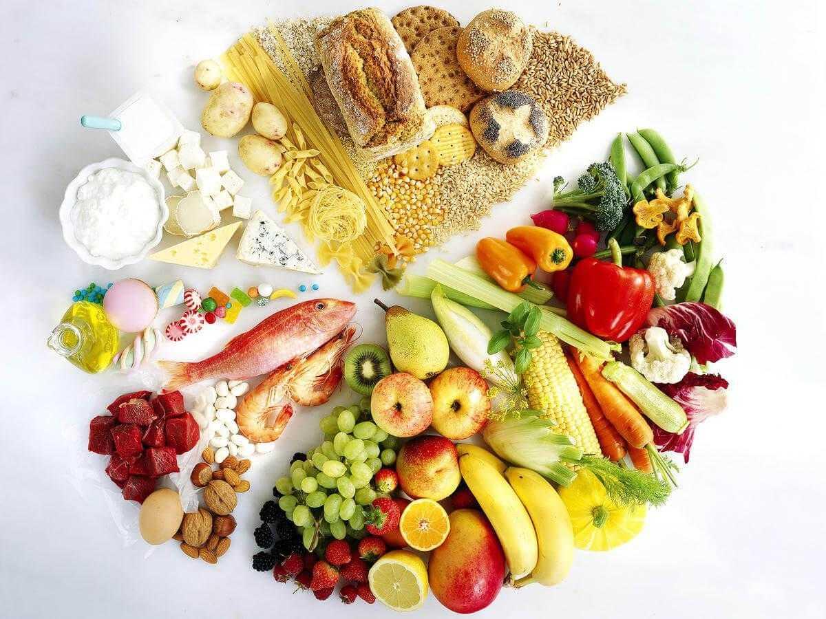 Диета гербалайф: меню и программы похудения | food and health