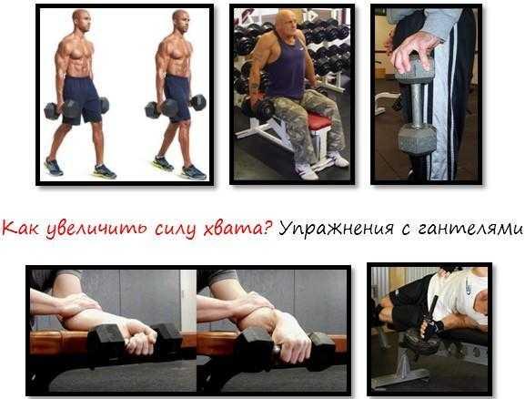 Тренировка силы хвата: комплекс упражнений, рекомендации по укреплению