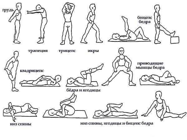 Техника скандинавской ходьбы - выбор экипировки и правила тренировок