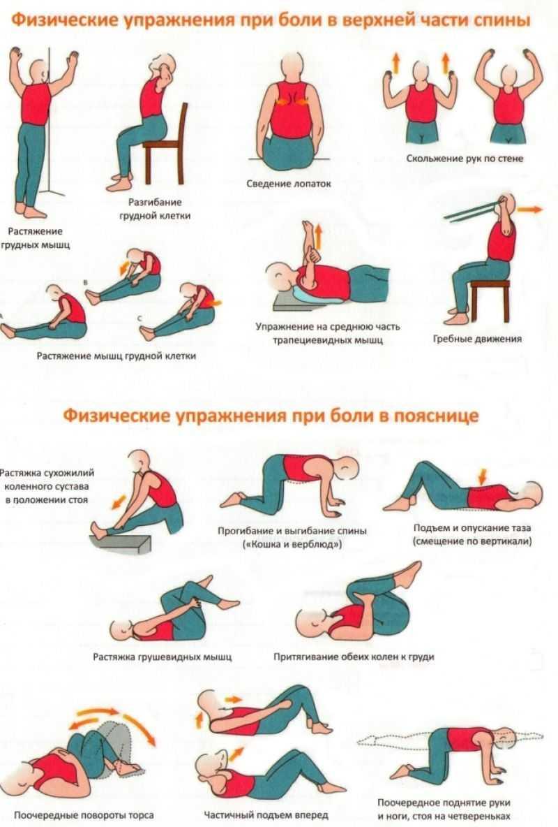 Боли в спине. лечение – 5 упражнений от бубновского. упражнения бубновского для спины