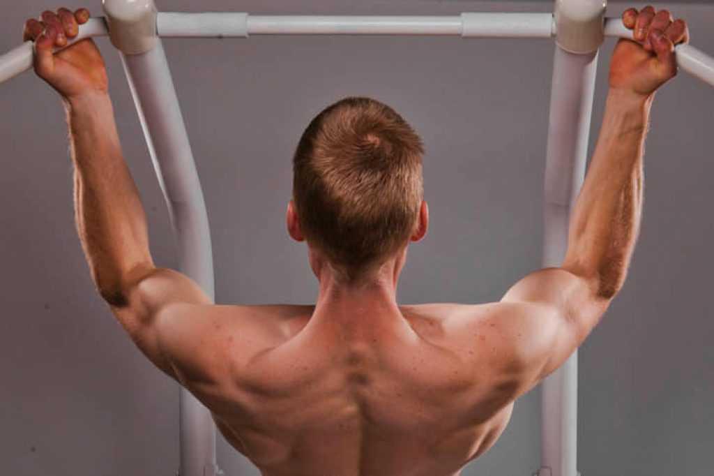 Упражнения для верхней части спины —как накачать верх спины?