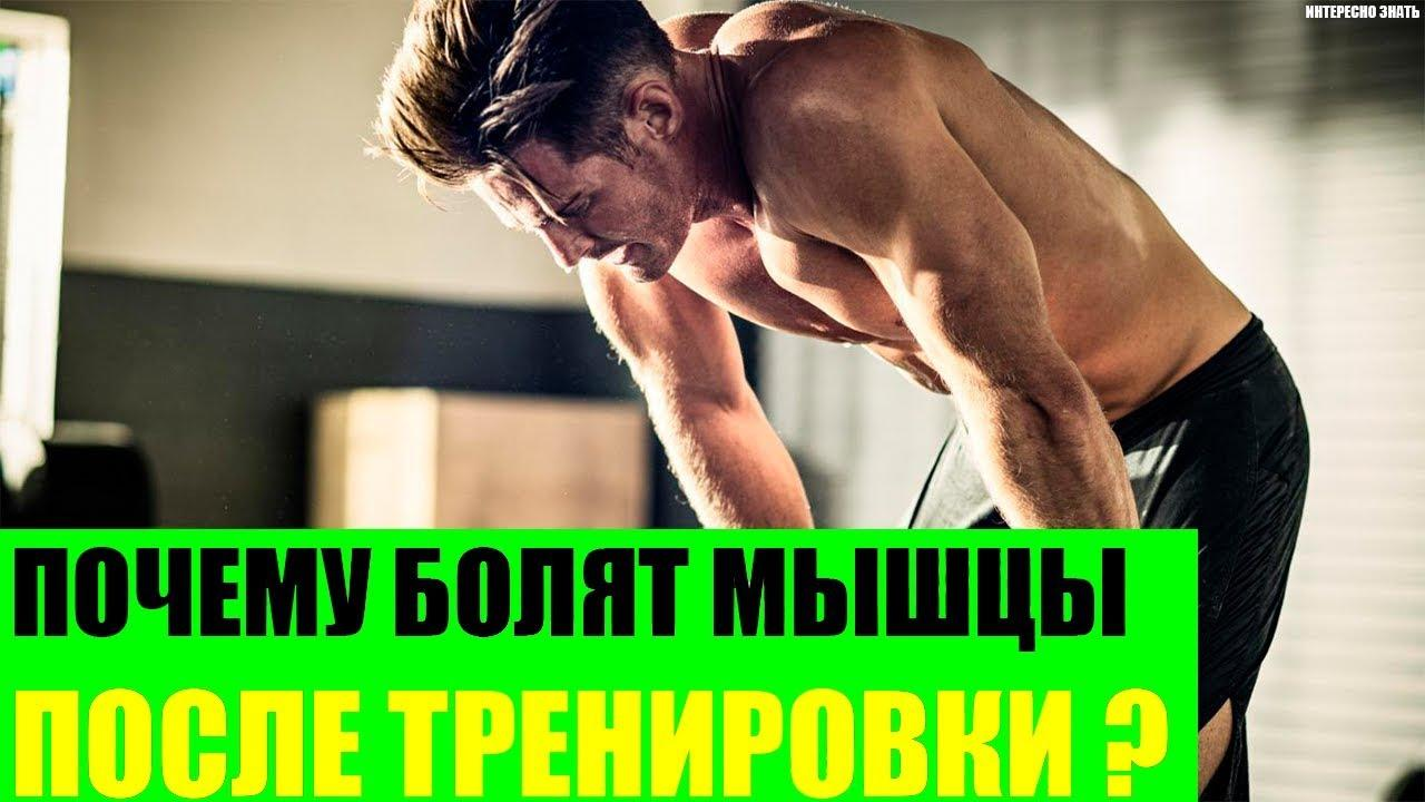 Мази от боли в мышцах после тренировки, виды кремов (болеутоляющие, согревающие)