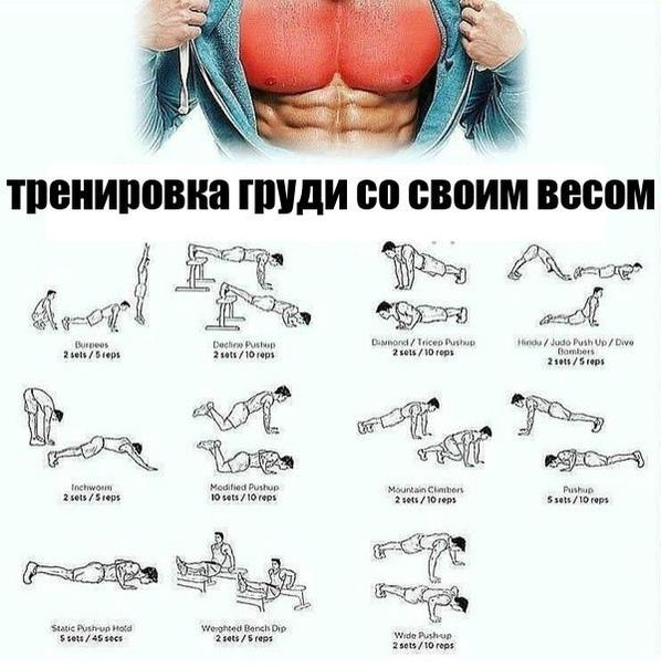 Силовые упражнения на грудь и трицепс: суперсеты (ФОТО)