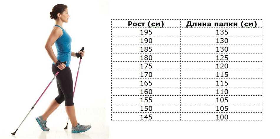 Сколько калорий сжигается во время ходьбы? | секреты успеха