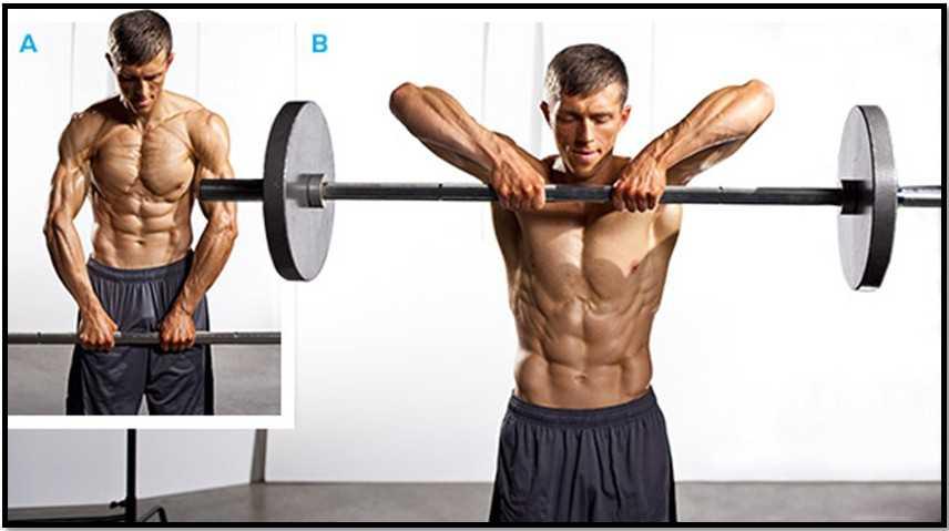 Эффективные упражнения с гантелями для мышц рук   rulebody.ru — правила тела