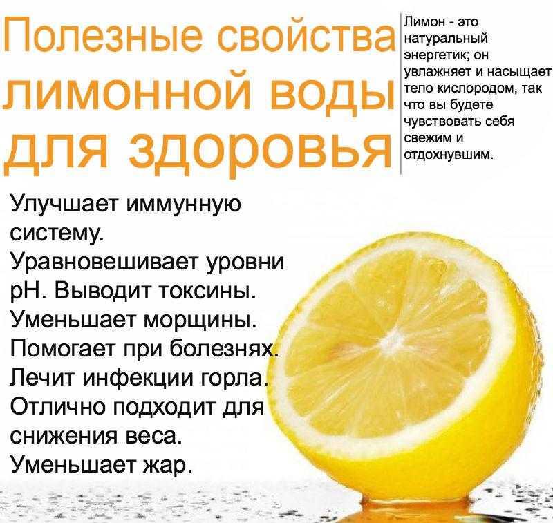 Маска для лица из авокадо: польза, рецепты, результат :: syl.ru
