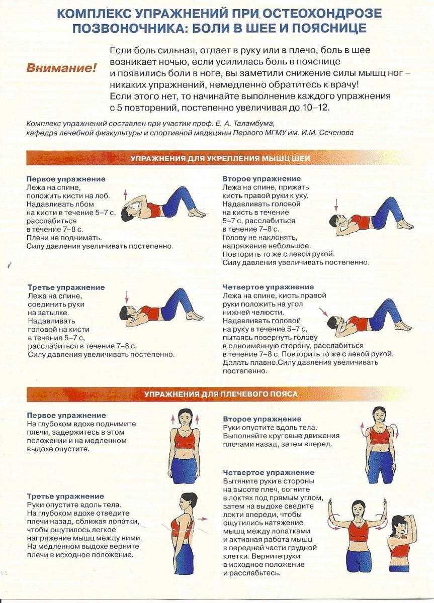 Гимнастика для шеи: 11 упражнений, которые снимут напряжение и улучшат осанку