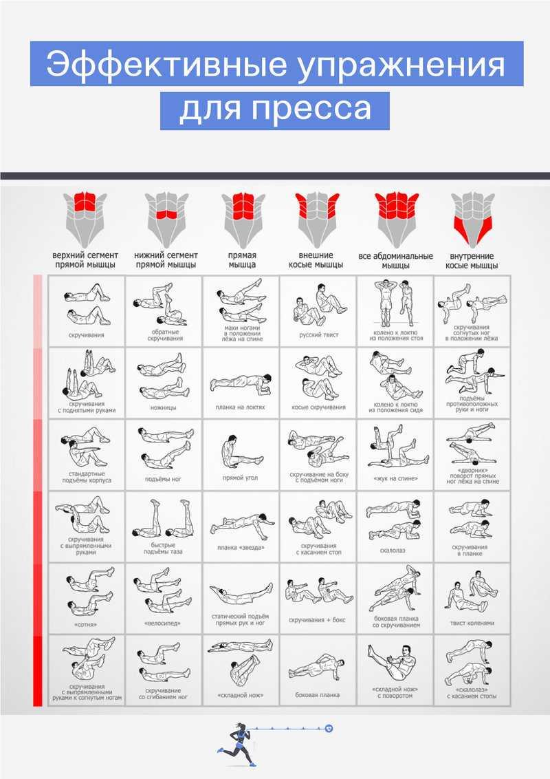 Как накачать пресс дома: 13 эффективных упражнений - лайфхакер