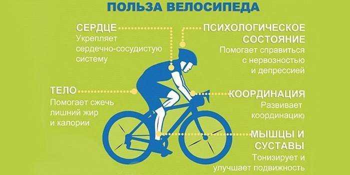 Как похудеть на велосипеде; правила езды на велосипеде для похудения