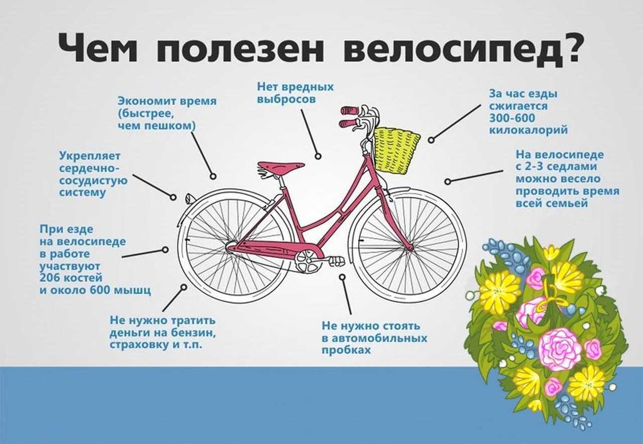 Помогает ли велосипед похудеть - правильная езда для похудения