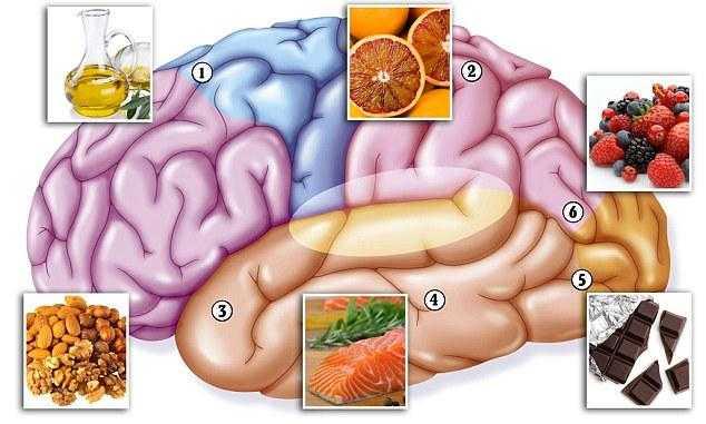 8продуктов, которые ухудшают работу головного мозга имогут привести кслабоумию – ура! повара