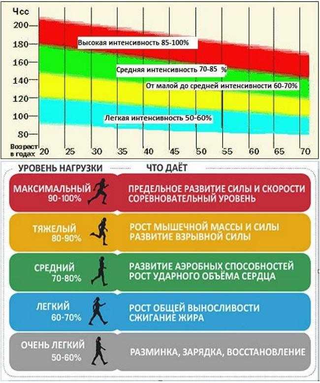 Пульсовые зоны (зоны сердечного ритма): аэробная, целевая, жиросжигания, тренировочных нагрузок, мпк, расчет по формуле