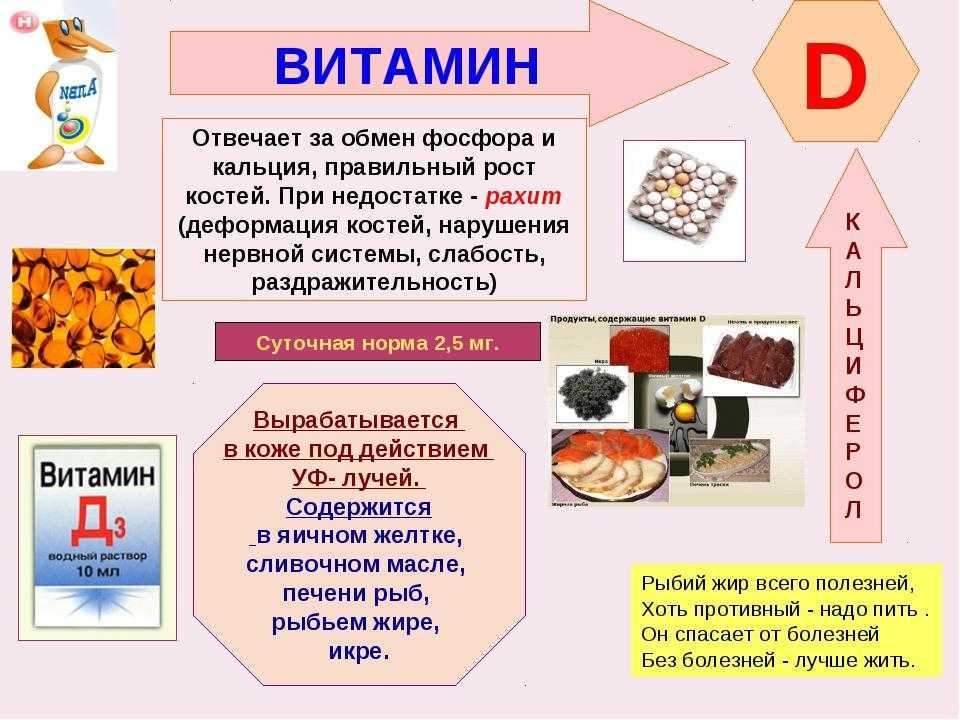 Витамин д и кальций – польза, продукты-источники и инструкция