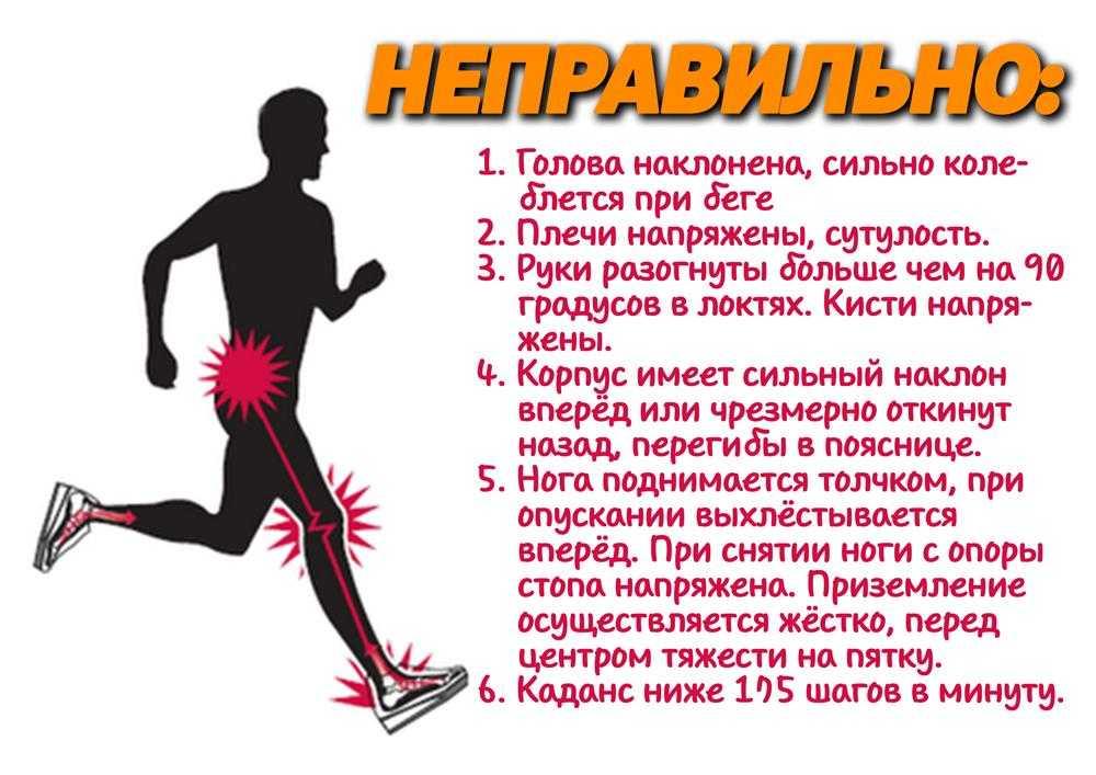 Какие мышцы при беге работают: практические навыки спортсмена