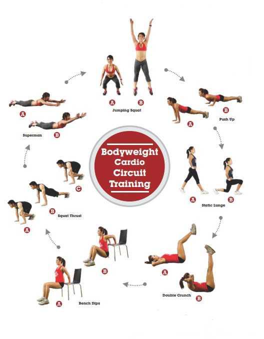Особенности  тренировок по круговому методу
