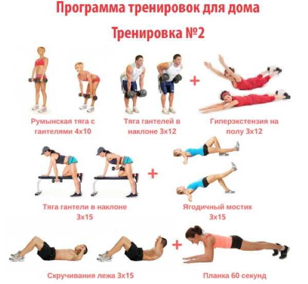 Круговые тренировки —функциональная для мужчин и на ягодицы для женщин