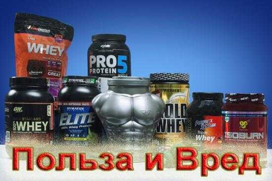 Вреден ли протеин для здоровья? научные исследования | promusculus.ru