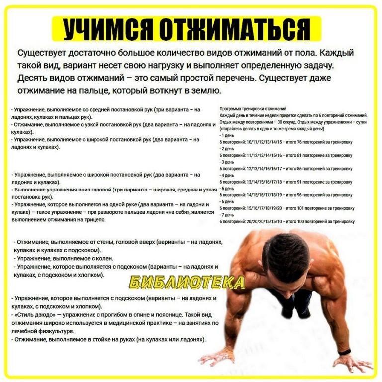 Польза и вред отжиманий, какие мышцы работают, виды, техника, схемы | zaslonovgrad.ru