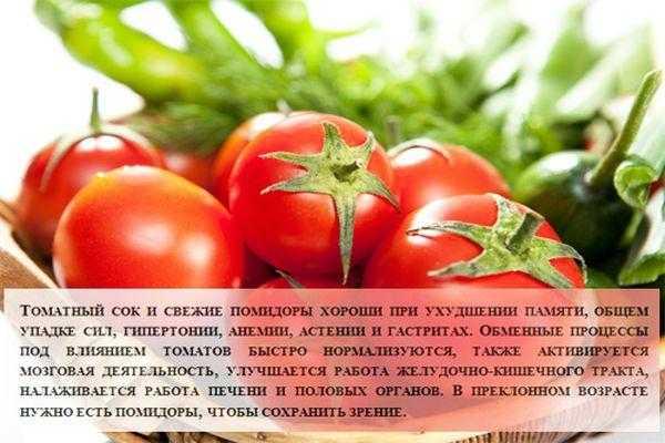 Помидоры: польза и вред для организма, калорийность