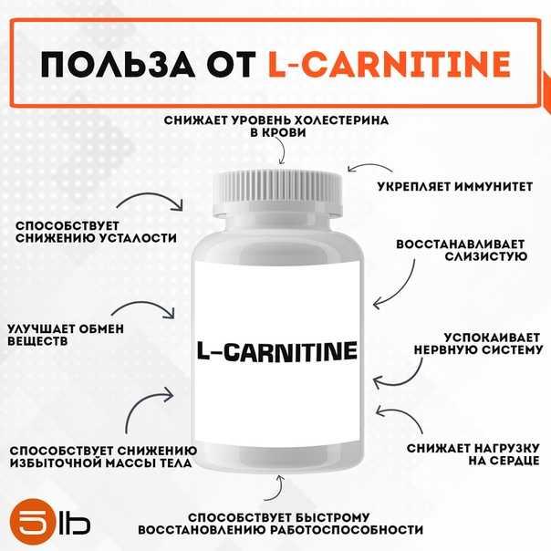 Л-карнитин: до или после еды, как правильно принимать