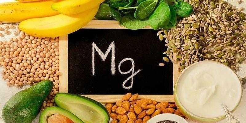 6 главных питательных веществ для организма – почему они нужны
