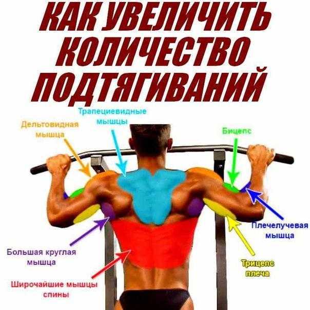 Как увеличить количество подтягиваний не нарушая техники упражнения Две эффективные методики достижения результатов – развиваем силу и выносливость
