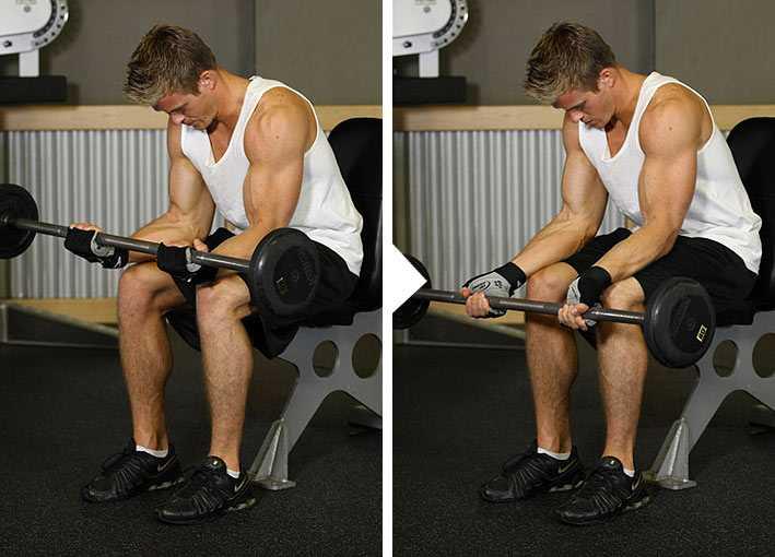 Армрестлинг: упражнения для кисти и предплечья - dailyfit