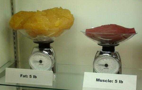 Вредные последствия похудения, как их избежать?   доктор борменталь