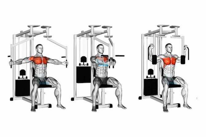 Техника выполнения разведения рук в тренажере Работа мышц при обратных разведениях, варианты хвата Рекомендации по правильному выполнению отведений рук