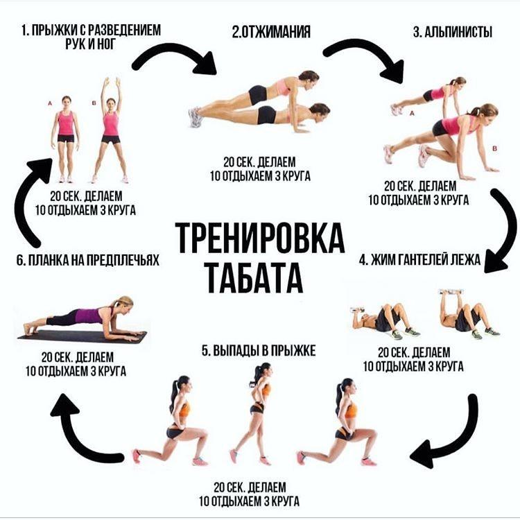 Программа тренировок для начинающих