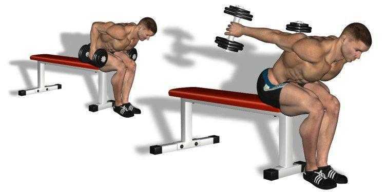 Разбираем технику выполнения жима Тейта с гантелями на горизонтальной скамье Упражнение направлено на проработку трицепса Противопоказания и рекомендации
