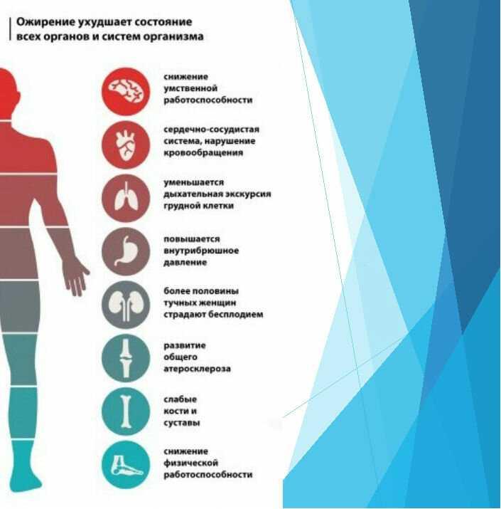 Как происходит процесс похудения в организме, основные этапы и способы скорейшего запуска