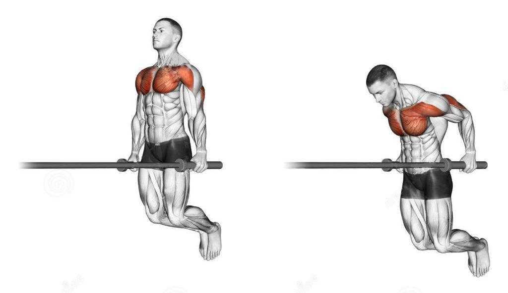 Как накачать грудные мышцы на брусьях - техника и нюансы