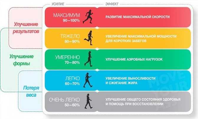 Кардио тренировка дома для мужчин, принципы упражнений в домашних условиях