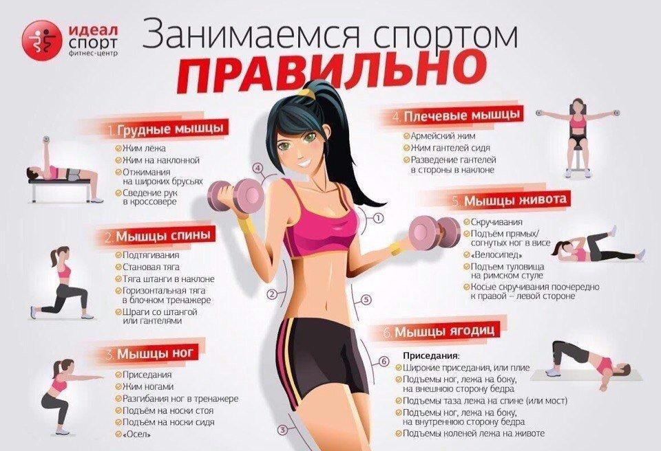 Обзор всех популярных тренировок шона ти