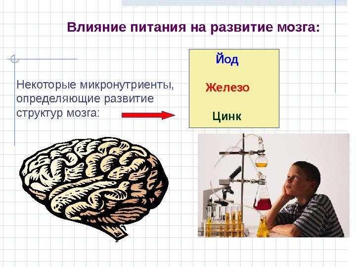 Как глюкоза (сахар) влияет на мозг человека — польза и вред сладкого для умственной деятельности
