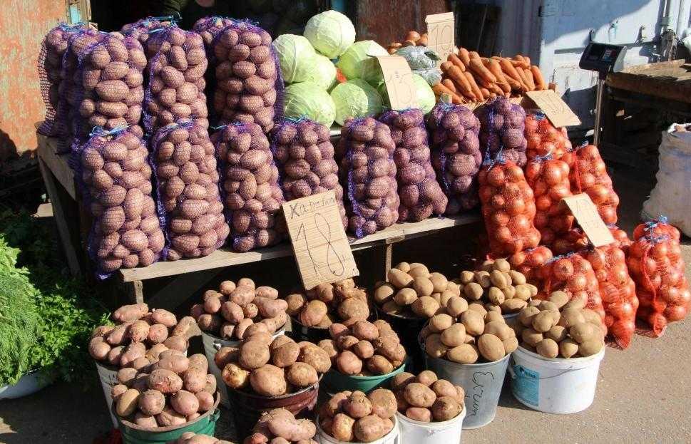 20 бизнес-идей производства еды