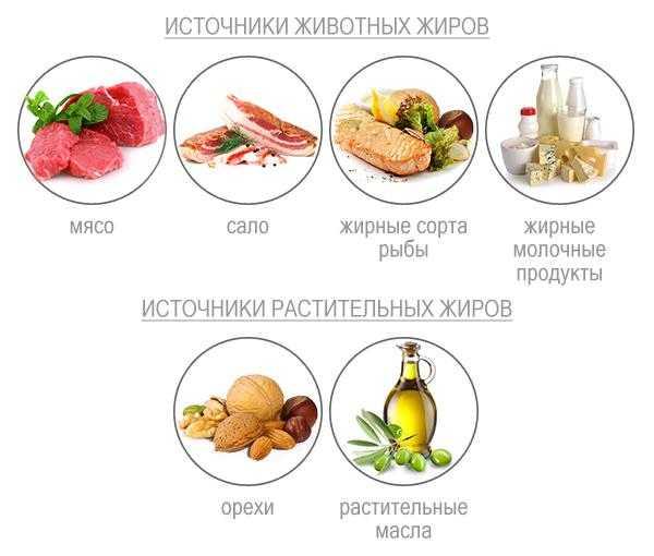 Топ-10 белковых продуктов для похудения + таблица