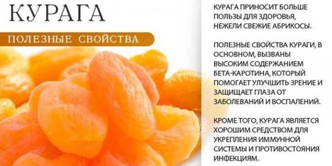 Сухофрукты при похудении: какие полезные продукты можно есть