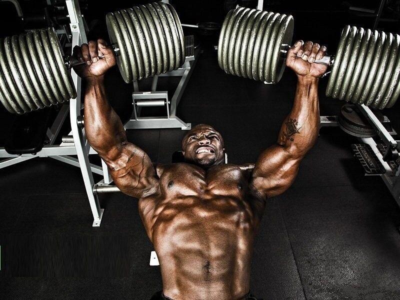 Жим арнольда: техника выполнения, какие мышцы работают