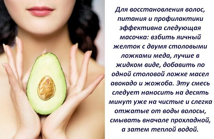 Авокадо: чем заменить в диете? химический состав и свойства авокадо - samchef.ru