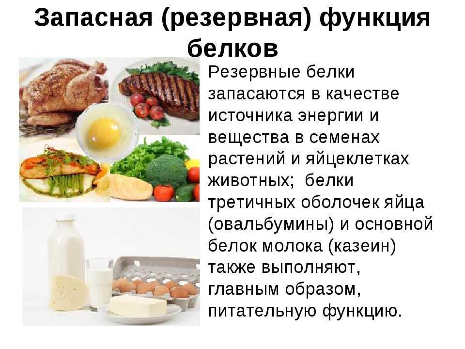Белок для похудения и для роста мышечной массы: общая информация, зачем нужен белок, чем грозит недобор и перебор белков Продукты-лидеры по содержанию белка