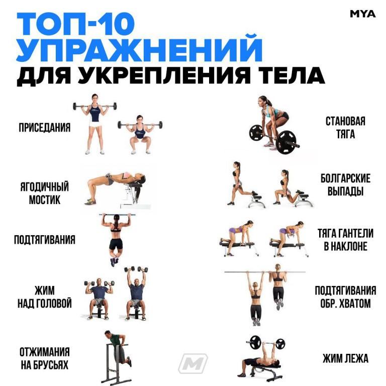 Тренировка ног для мужчин дома: 3 готовых плана (ФОТО)